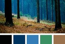Colors / by Wind_and_Earth