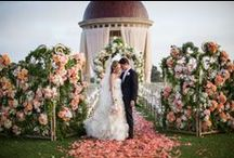 * Wedding / by hera kim