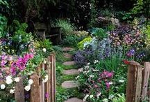 Cottage Garden Style / Inspiration for those who love the look of an English cottage garden.