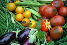 Full-Sun Veggie Boxes @raypage / Consider a tomato for your smaller box and a mix of veggies in the larger box. Any high quality potting soil will work to fill the boxes. We really like Dr. Earth Vegetable Garden Planting Mix