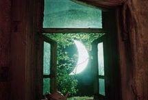 Moon Magic / by Pamela Fairchild