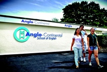 Adult English Language Courses / For more information about Anglo-Continental's courses, please visit: http://www.anglo-continental.com/en/uk/courses/course-index.html