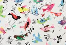 Hiboux, Oiseaux et cie