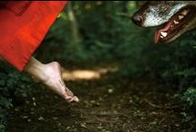 fairytales: little red riding hood