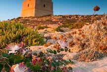 TravelLog: Malta