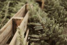téli hangulat, karácsony