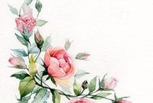 Watercolor Inspiration / inspiration for watercolor paintings