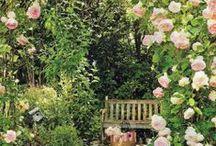 Giardini-gardens-jardins