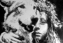 andrea saltini nutri il lupo d'estate ti divorerà d'inverno 2013