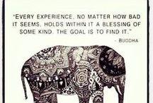This I believe... / by Gretchen Garcia