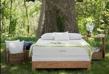 """Green"" Bedroom Ideas / by Savvy Rest Organic Mattresses"