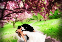 Fantastic Wedding Photography / Some gorgeous shots that I love...