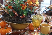 Halloween/Thanksgiving  / by Tricia Hardin Barker