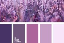 Colour Palettes / These colours work together so well!