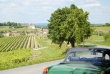 A Toast to France / Let's celebrate well-stocked French wine cellars, family-run distilleries and vineyard vistas with a tipple or two.  www.sawdays.co.uk/AToastToFrance