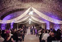 Mon Ami Weddings /  Mon Ami Winery Port Clinton, Ohio  by Mary Wyar Photography http://marywyar.com