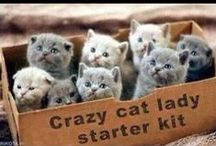 Cuties !!!:)