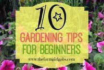 Gardening for Beginners / Gardening for Beginners