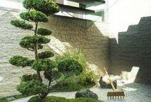 Zen Garden / Zen Garden