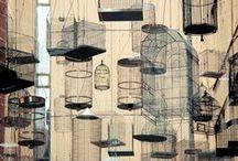 Birdcages, as decor.
