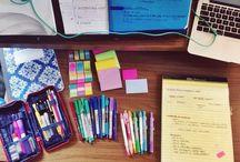 School & Organization