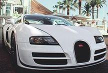 Dream of Cars