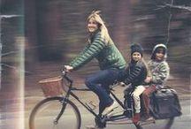 Family / by Stephanie Mills