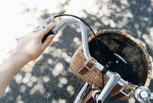 bikes / by macey carlile