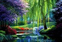 Gardens / Beautiful parks and gardens