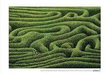 labirinthen en spiralen