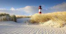 BALTIC SEA BEACH / Baltic, Baltic Beach, Nature, Ocean, Sea,