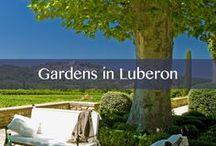 Gardens in Luberon