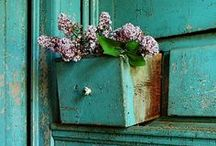 muebles azules y rosas