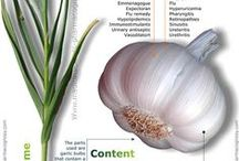 ❤️❤️ Garlic