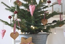 Christmas Trees! / Smells Good!! Looks Good! / by Carolyn Parsons