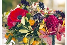 Crazy colour / Inspiration for the couple NOT afraid of colour.  Crazy combinations or colour blocking, a florist loves a wedding where there are no colour restrictions.
