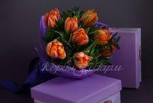 Комплименты / Преподнести комплимент можно не только словами, но и цветами:)