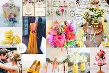 CBC Mood Boards / Creative Mood boards by Carina Baverstock Couture