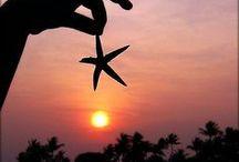 ✫ Sunrise & Sunset ✫