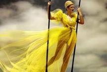 Colour Me Yellow!