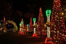 Garvan Holiday Lights / The largest outdoor light display in Arkansas with over 4 million lights in 2013!