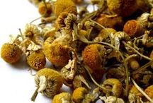 Organic Teas / Sustainable organic tea from The Teamakers of London.
