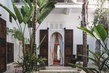 Courtyard Zen Garden