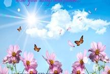www.myangeland.blogspot.gr