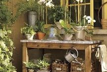 Potting Bench & Garden Shed Love / Puttering on your potting bench? Do it in style...Garden style! Fun ideas for making it yourself or finding space at your place!   / by Sue Zuehlke