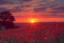 Sunsets//sunrises