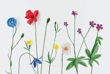 Paper Flowers - Malini / Inspiration Paper Plants