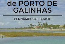 Pernambuco / Viagem para Pernambuco. Recife, Olinda, Porto de Galinhas, Fernando de Noronha, Praia dos Carneiros.