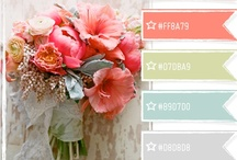 Color Palette Inspiration  / For creating and decorating / by Cynthia Sanchez {Oh So Pinteresting: Pinterest Consultant and Speaker}