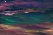 ::: Landscapes :::   / by Darren